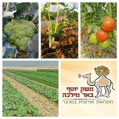 ירקות ופירות אורגניים עד הבית