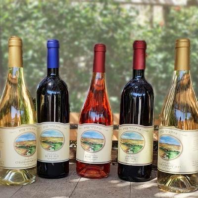 מגוון יינות אדומים ולבנים